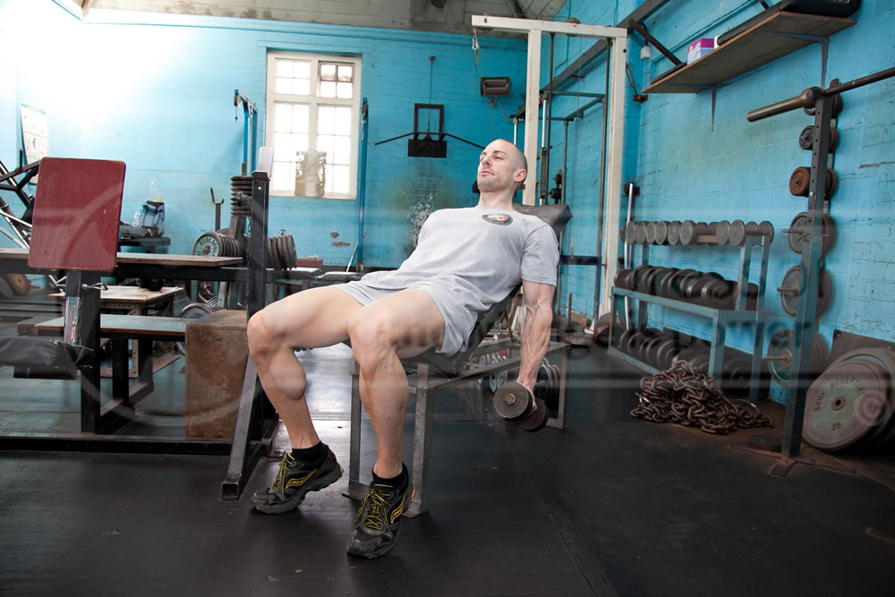 Incline Dumbbell Supination Curls