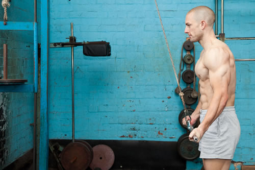 Reverse-Grip Triceps Pressdowns Mid-Position