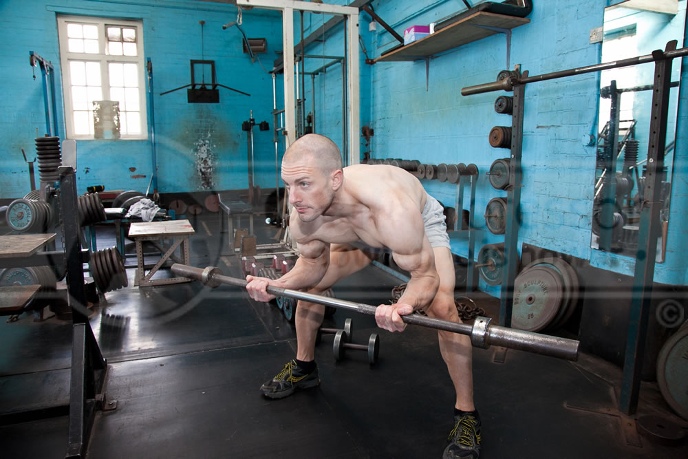 Bent-Over Barbell Curls