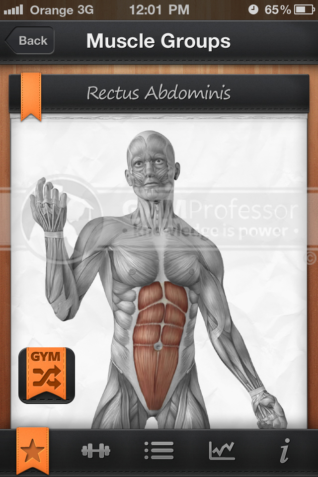 Abs anatomy from GP Shuffle app
