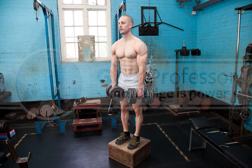 Dumbbell Stiff-Leg Deadlifts Deadlifts With Dumbbells