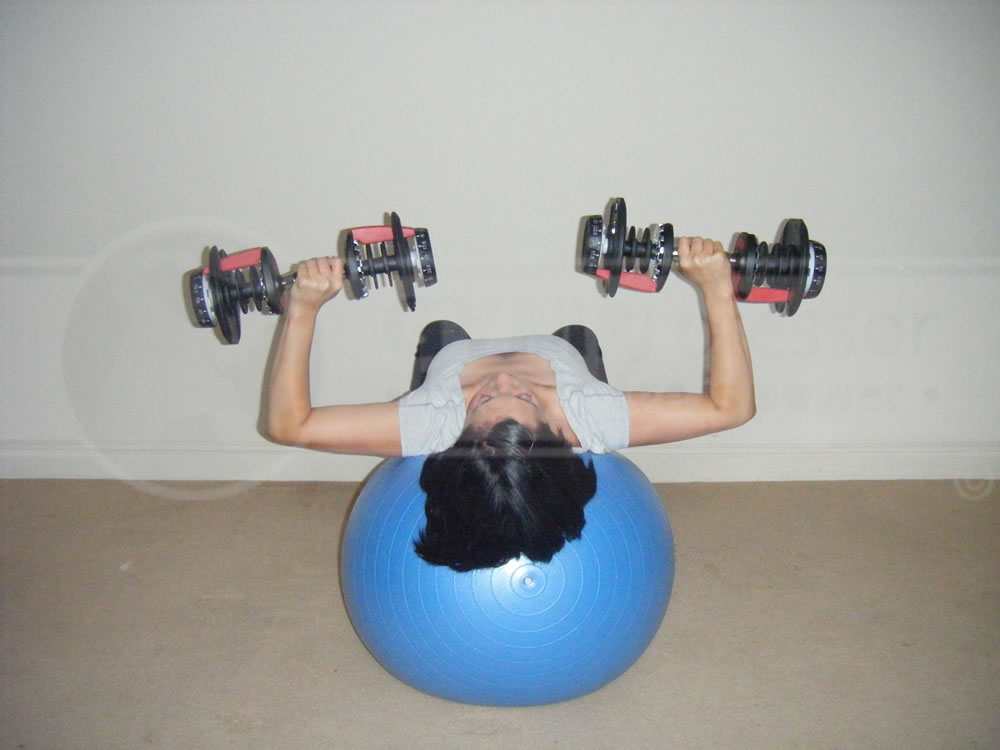 Dumbbell Press image from Home Gym Workouts for Women